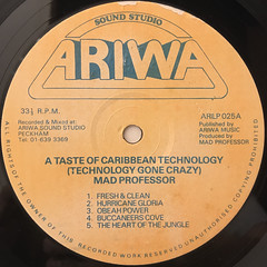 MAD PROFESSOR:A CARIBBEAN TASTE OF TECHNOLOGY(LABEL SIDE-A)