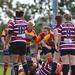 Peterborough Ladies VS Shelford Ladies Rugby Team Game  09-09-2018 (502)