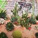 Lullingstone Castle Mexican Weekend