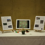 "OEWG 11 - Photo Exhibition ""PLASTO LEMANO"" by artist Emilie CRITTIN"