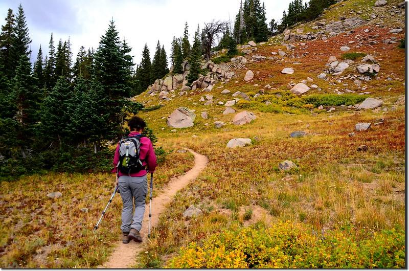 Continental Divide Trail (11)