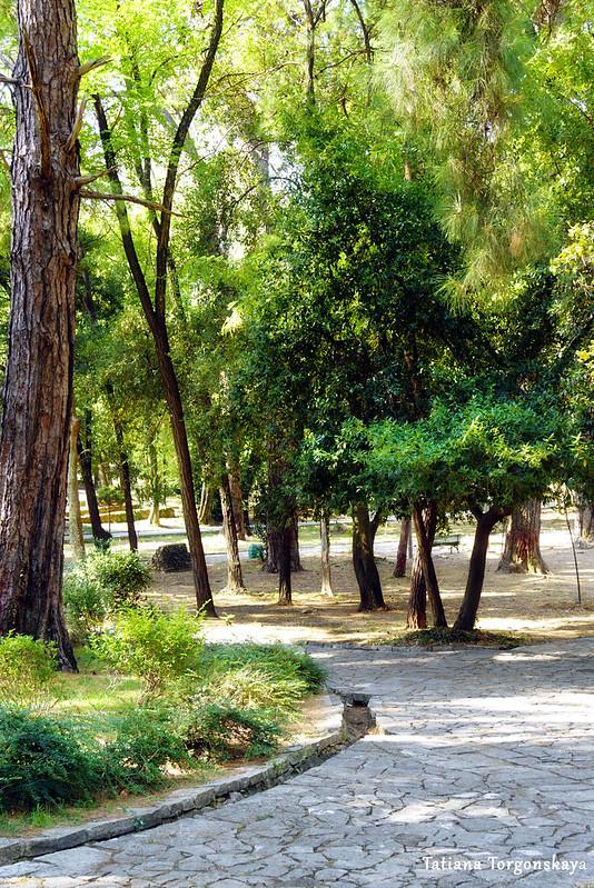 Дорожка в Городском парке