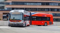 WMATA Metrobus 2009 New Flyer DE60LFA #5447