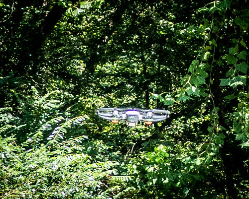 Jim Leavell with Drone at French Broad River-004