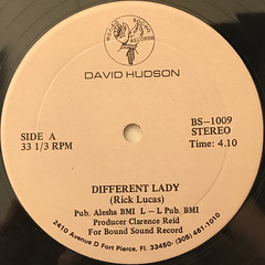 DAVID HUDSON:DIFFERENT LADY(LABEL SIDE-A)