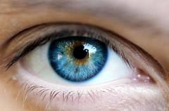 Com a chegada da primavera, alergias oculares podem aumentar