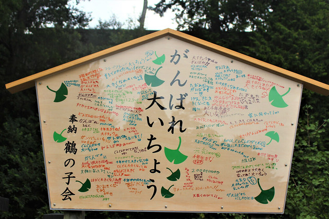 tsurugaoka022