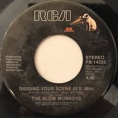 THE BLOW MONKEYS:DIGGING YOUR SCENE(LABEL SIDE-B)