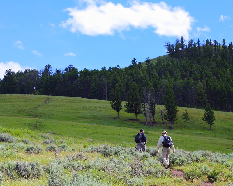 IMG_8303 Hikers on Petrified Trees Trail