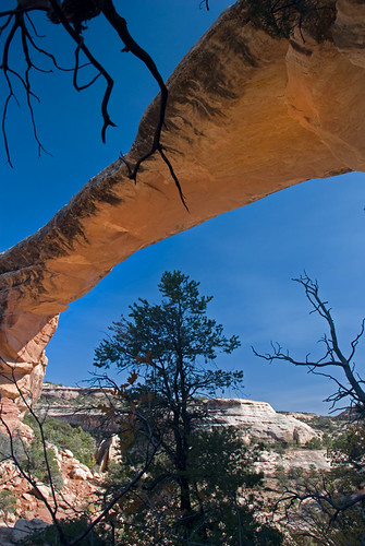 The big arch-shaped rock formation at Natural Bridges National Monument, Utah