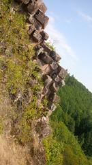 Westalpen 2018-08 502 Ruine Bildstein Urbeis