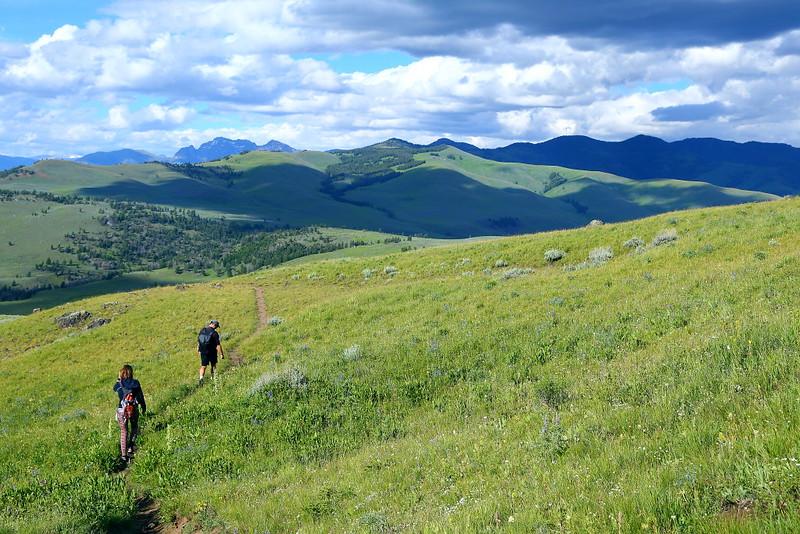 IMG_8370 Hikers on Petrified Trees Trail