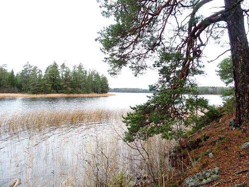 SÖ E54 Sjön Björken