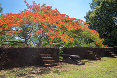 Chanthaburi Ancient Fortress (Khai Noen Wong)