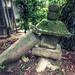 this stone lantern has seen better days この石灯籠にだってよい時代もあった。 by MissionControl