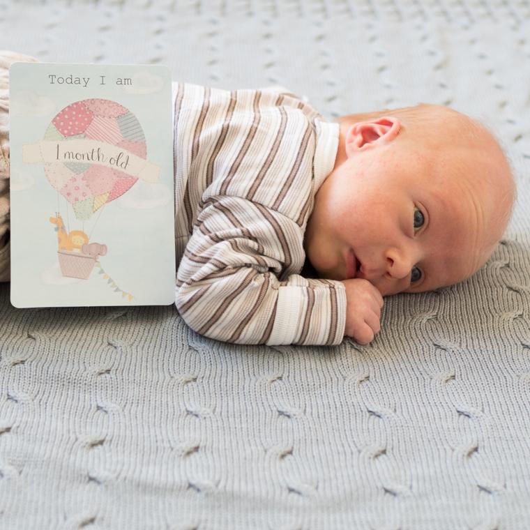 kuukauden ikäinen 6