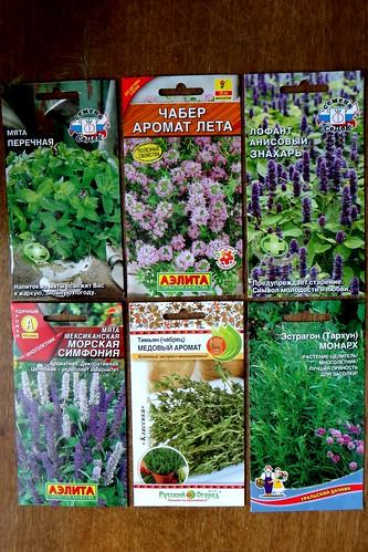 Семена для огорода душистых и пряных трав