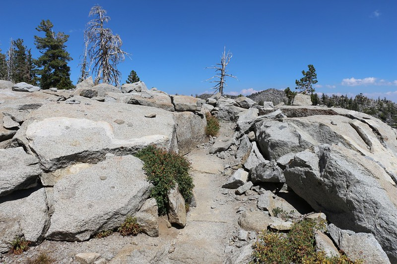 They really blasted away the granite when they built the Tahoe-Yosemite Trail east of Phipps Peak