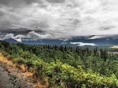 Alaska_MatanuskaGlacier_20180807-120442_PALE3747#