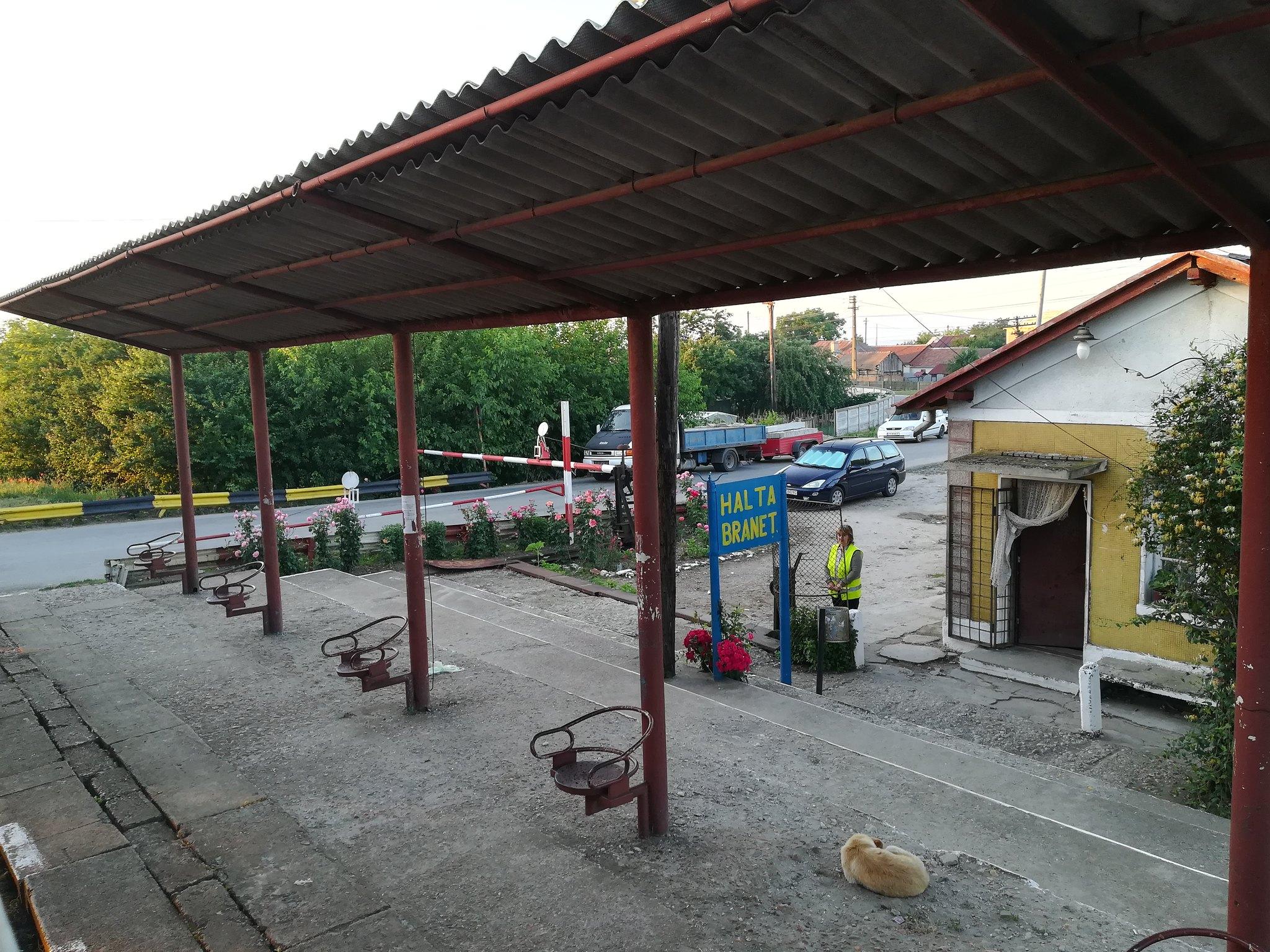 Reportaje feroviare Adirmvl - Pagina 15 44837181131_b13644a894_k