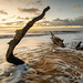 Washed away - Covehithe, Suffolk by Justin Minns