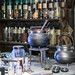 Harry Potter WB Studio Tour-Potions