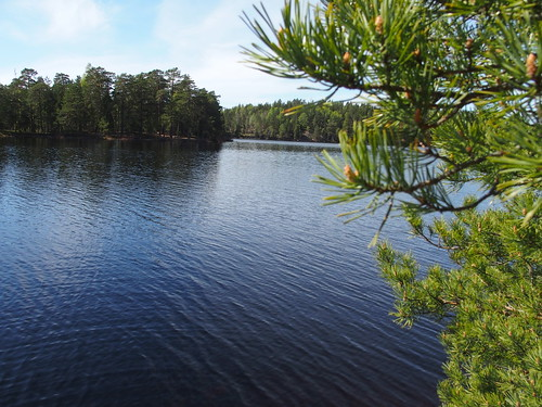 SÖ E13.1 Långsjön1