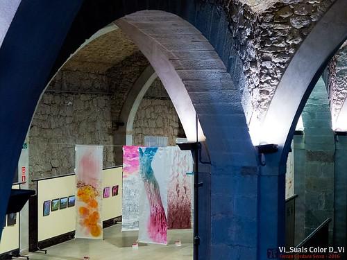 Exposició Vi_Suals 2016 Color D-Vi, Manresa 2016.