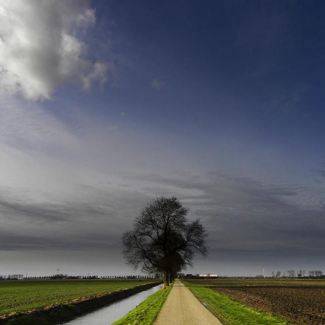 Noord-Hollands landschap, Nikon COOLPIX P90