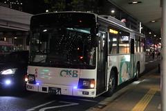 Chunichi Rinkai Bus