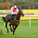 Dream Today in the Champagne Stakes