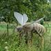 Giant bionic bug - bee
