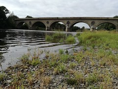 Coldstream Bridge, Aug 2018