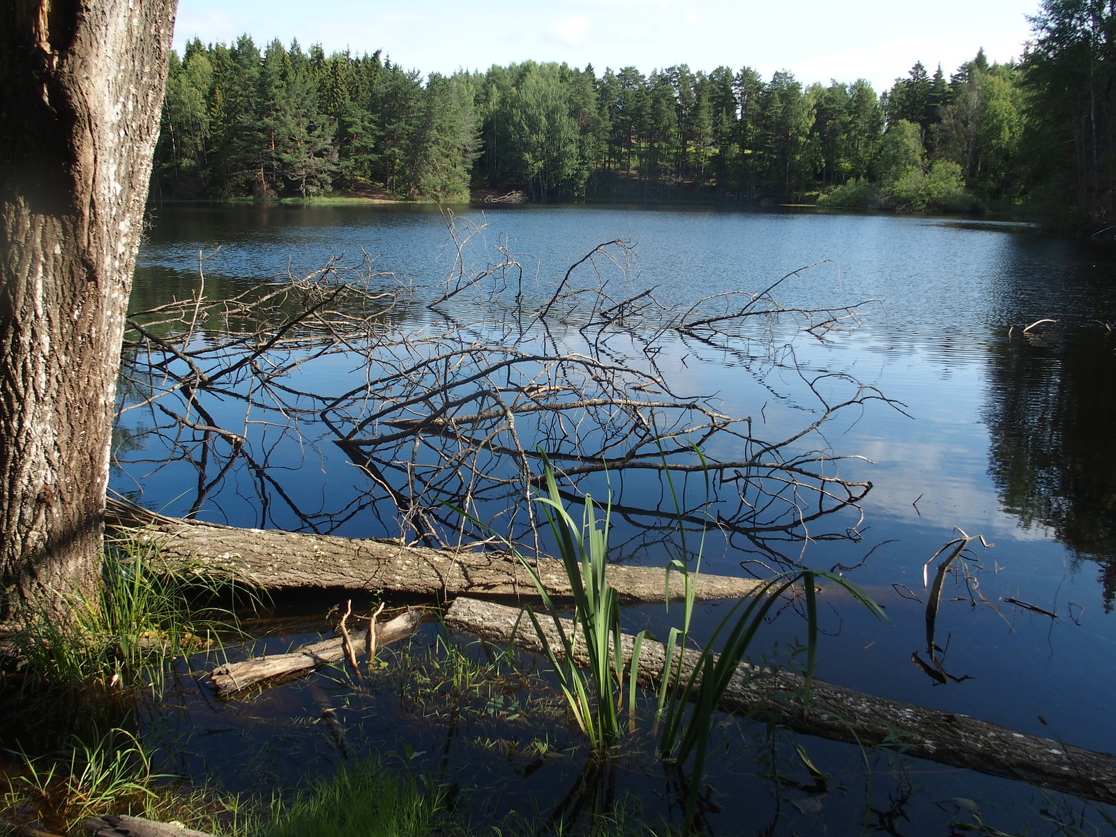 SÖ E7 Trollsjön