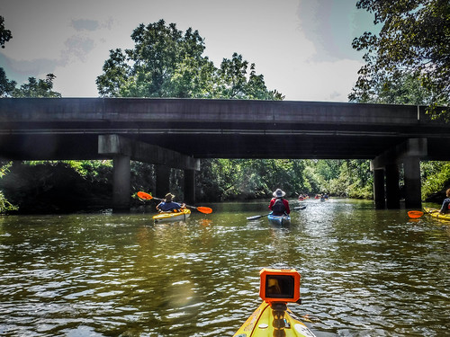 French Broad River - Rosman to Island Ford-173