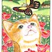 Orange cat with a butterfly and poppies in the countryside