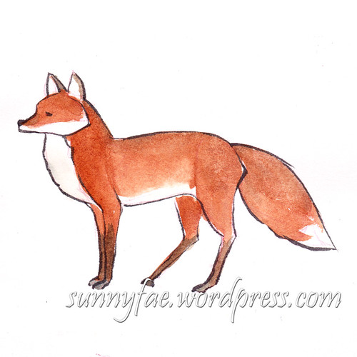 Fox sketch standing coloured with watercolour