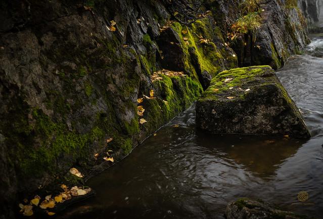 Rock in stream - Pisew