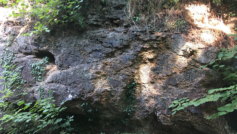 Holystreet Manor Cliff Face