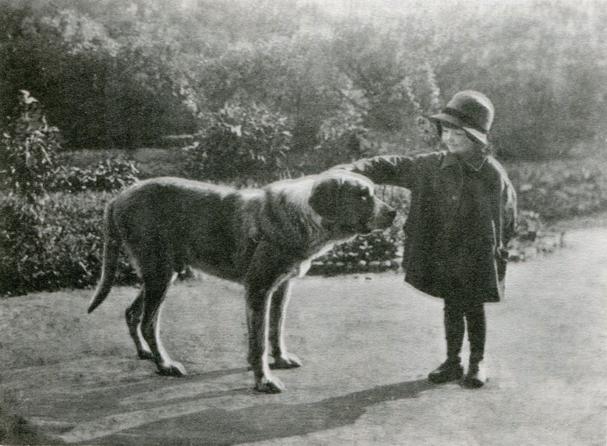 Ира Пунина и сенбернар Тапа в саду у Фонтанного дома
