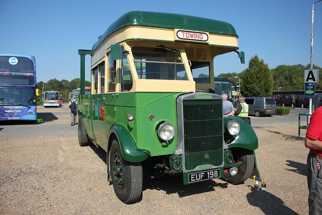 Buses at Horsham