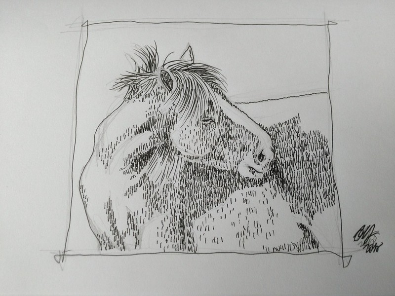 Drawing again - itchy horse