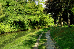 le canal de l'Ourcq à Villers-les-Rigault - Photo of Le Plessis-Placy