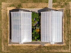 Bird's eye view of two greenhouses. Aerial photography