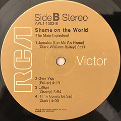 THE MAIN INGREDIENT:SHAME ON THE WORLD(LABEL SIDE-B)