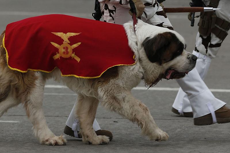 Военный парад в Чили