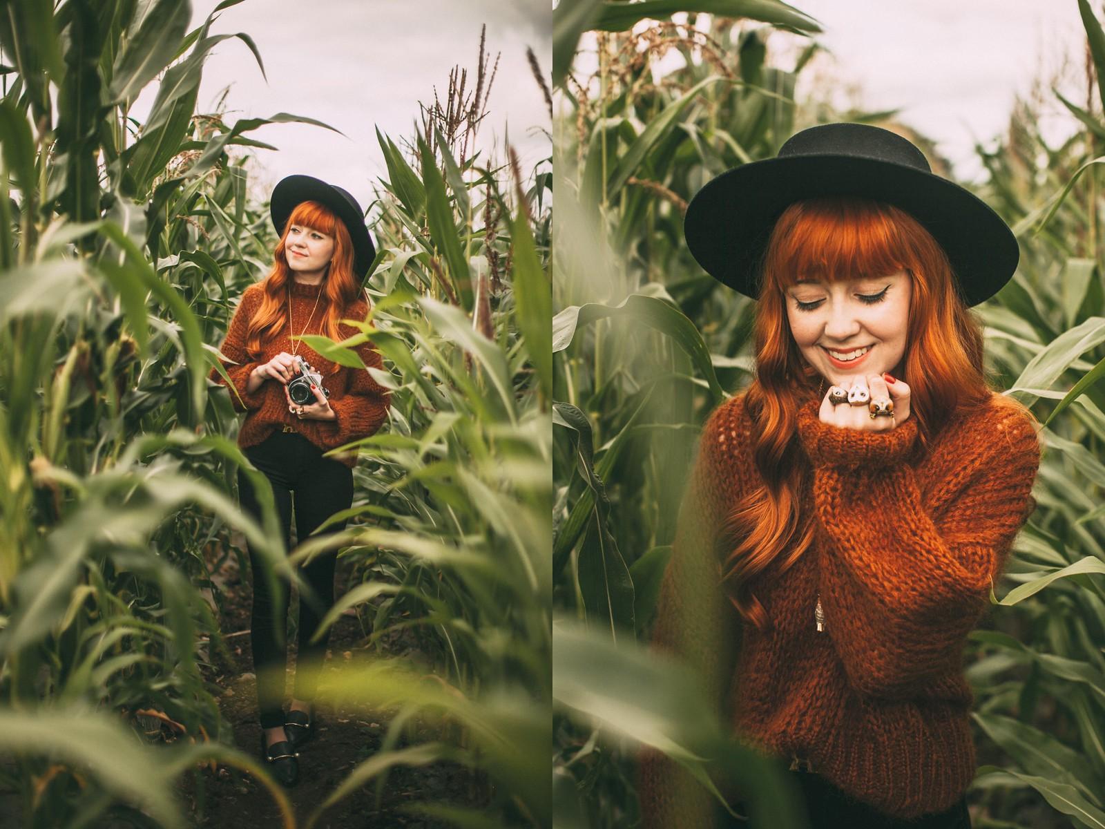 corn field-23-side