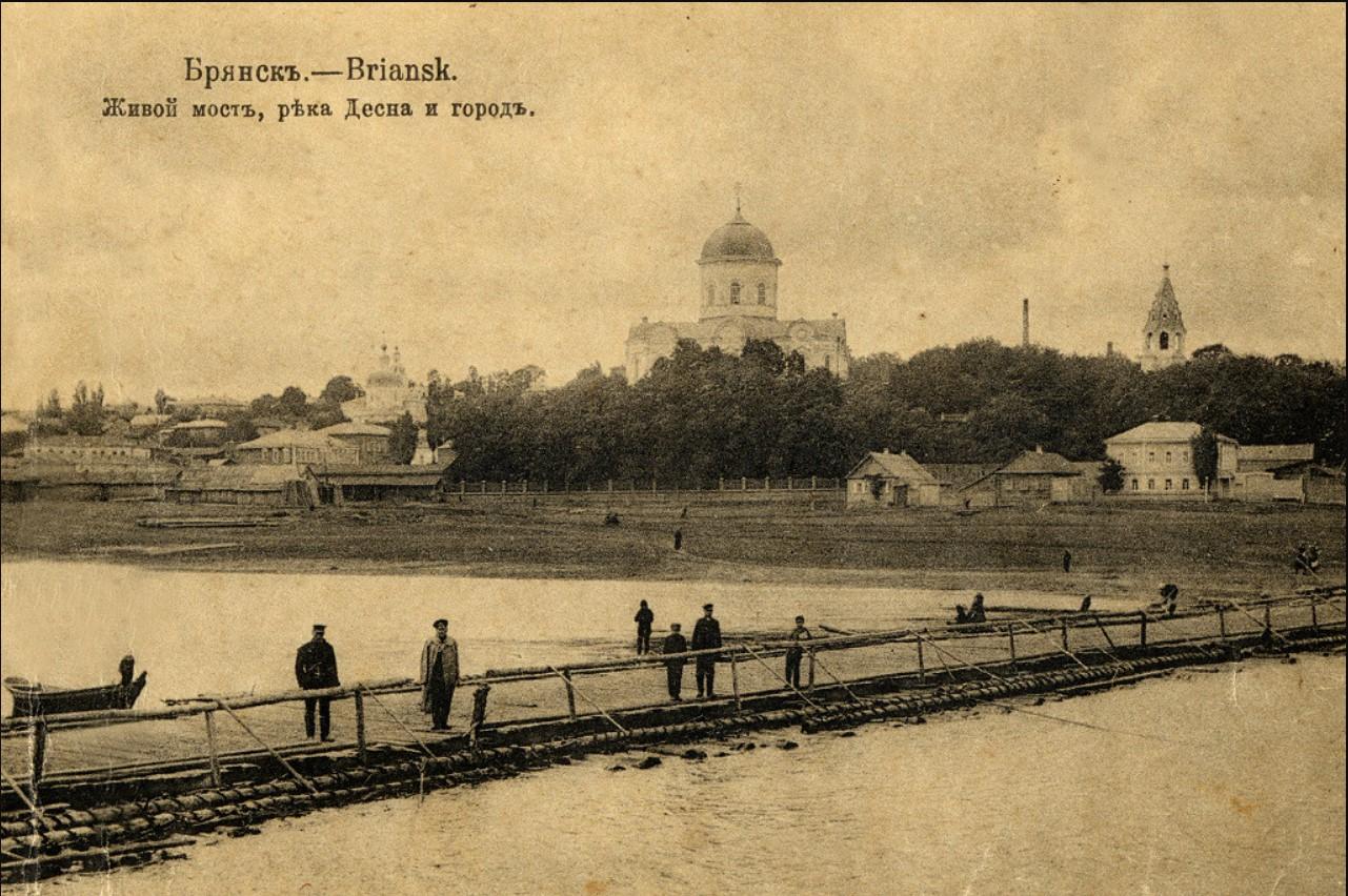 Живой мост, река Десна и город