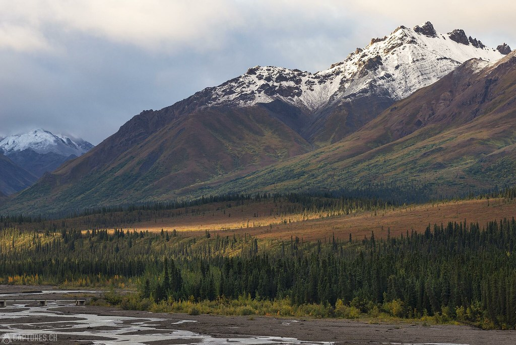 Morning in the Denali National Park - Alaska