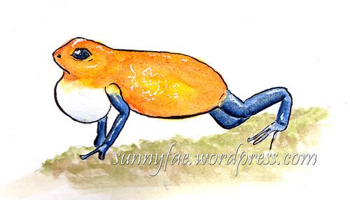 strawberry poison dart frog ribbit